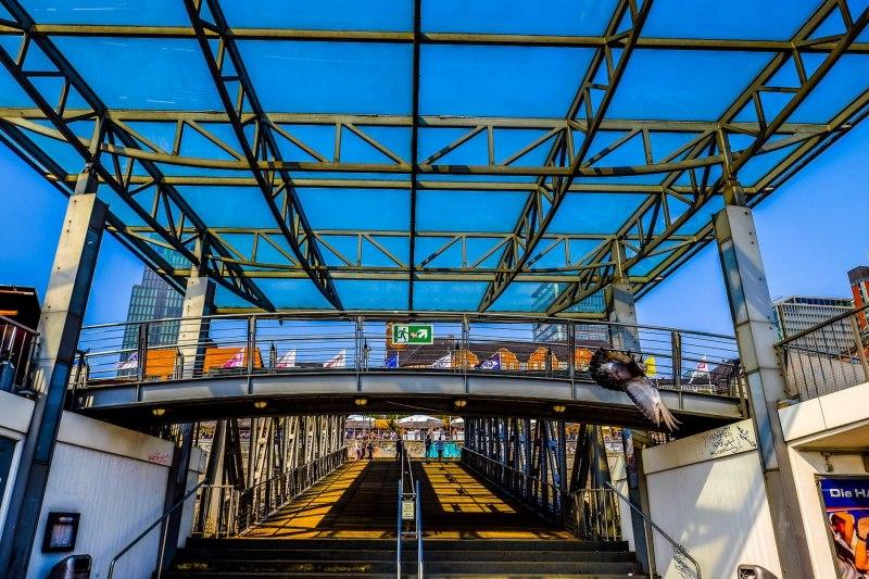 Landungsbrücke mit Taube